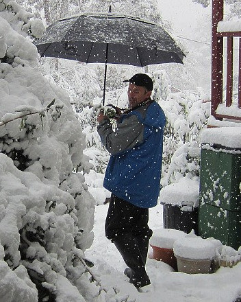 Mr Blackheath Weather