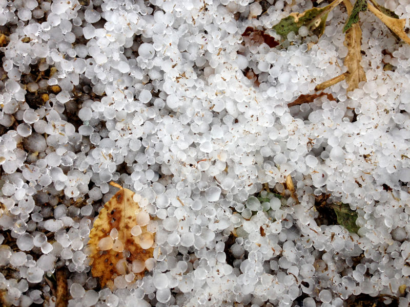 Winter Hail